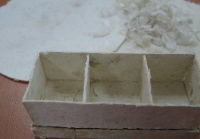 Escamas de tilapia, alternativa para sustituir plásticos